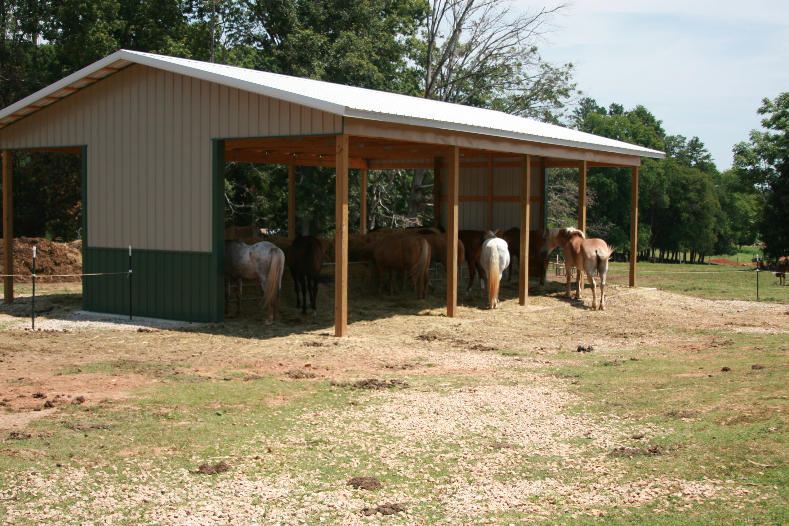 feeders straight product hay feeder place horse poly the
